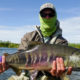 The facts about Chum Salmon