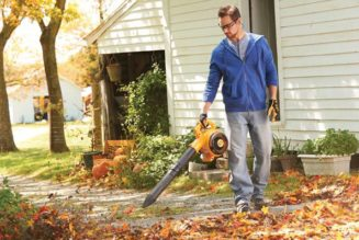 Guide to Use Leaf Blower like A Pro