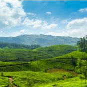 5 Destinations to Explore Hill Stations in South India