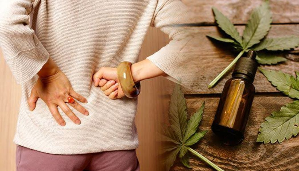 How CBD oil can reduce pain