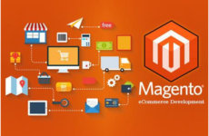 7 Ultimate reasons to choose Magento e-commerce development for your Online Business