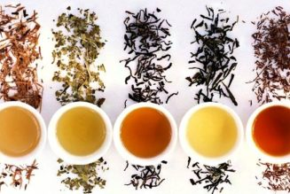 Confused About Which Tea Variety to Buy? Check Out These Shopping Tips
