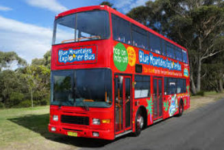 Make the Right Judgement while Taking a HOHO Bus for Nice Tour