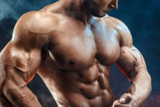 By what method Should You Use User Reviews To Know Details about Clenbuterol