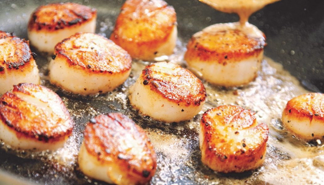 Taking Scallops are safe?