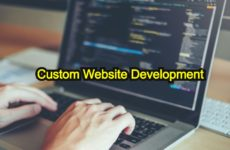 Why Should You Opt For custom website development?