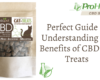 Perfect Guide in Understanding the Benefits of CBD Cat Treats