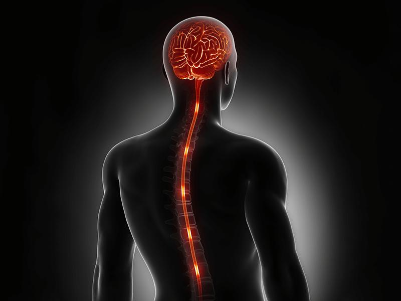 A detailed and comprehensive note about neuromodulation global report