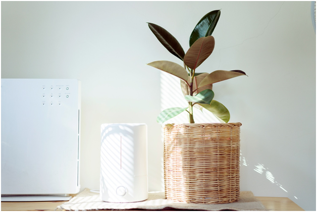 Breathe Clean Air All the Time with Outstanding Air Cleaners